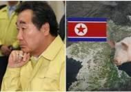 """""""북한에도 아프리카돼지열병"""" 공식 확인…이낙연 '차단 방역' 긴급지시"""