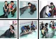 제주마린파크, 돌고래 복지 위한 '동물보호' 직원교육 실시