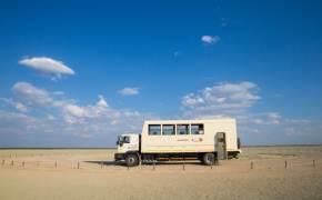 아프리카 초원을 달리는 이것, 트럭인가 버스인가?