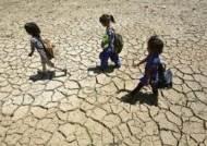 '50.6도' 기록한 인도, 사망자 속출…가뭄에 씻는 것도 포기