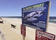 상어 공격받는 10대 딸 구하려 상어 머리 후려친 아빠