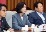 """김원봉 후폭풍, 與 """"억지로 생채기"""" 野 """"역사적 막말"""""""