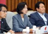 "<!HS>김원봉<!HE> 후폭풍, 與 ""억지로 생채기"" 野 ""역사적 막말"""