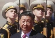 """정부 """"시진핑 중국 국가주석, G20 때 방한 안 한다"""""""