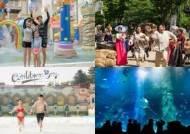 [주말&여기] 당일치기로 즐기기 좋은 서울 근교 '액티비티' 여행지