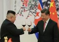 트럼프 '홍콩 카드'압박에 시진핑 '평양 카드'로 반격
