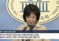 """탈당 땐 그리 말리더니···여당 """"손혜원 기소 관심 없다"""""""