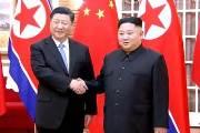 """시진핑 """"비핵화 적극 역할"""" 김정은 """"관련국들 소극적"""""""