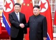 [서소문사진관]시진핑 주석 평양 도착, 14년 만의 中 최고지도자 방문