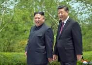"""北통신 """"김정은·시진핑, 중요한 문제들 견해일치"""""""