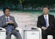 中 외교부, 시진핑 주석 일본 '방문' 대신 G20 '출석' 쓴 이유는