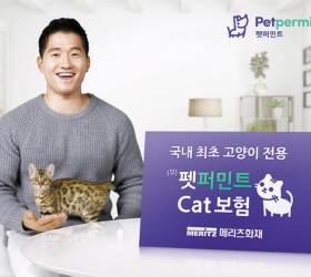 [함께하는 <!HS>금융<!HE>] 업계 최초 '장기 고양이보험 상품'3년 단위 갱신, 보험료 인상 최소화