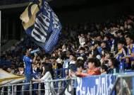 축구토토 스페셜 23차, 1,573명 무더기 적중