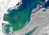 남·북극 얼음의 저항···지구<!HS>온난화<!HE>에 녹으며 <!HS>온난화<!HE> 늦춘다