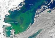 남·북극 얼음의 저항···지구온난화에 녹으며 온난화 늦춘다