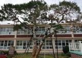 고 이병철·구인회·허정구 회장 나온 초등<!HS>학교<!HE>에 기업가정신센터 생긴다