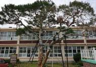 고 이병철·구인회·허정구 회장 나온 초등학교에 기업가정신센터 생긴다
