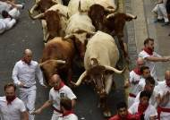 [서소문사진관] 쓰러지고 피흘려도 달린다…스페인 소몰이 축제 개막