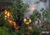 강원 영월 남면 산불 발생, 1322㎡ 태우고 확산 중