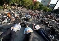 [서소문사진관]'자동차가 사람을 죽이고 있어요'. 뉴욕 시민들 '다이인' 시위