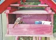 [사진] '사랑' 전하는 딱새 집배원