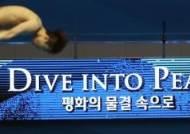 [광주세계수영선수권대회] '판매 목표금액 95% 달성'…입장권 만석 임박