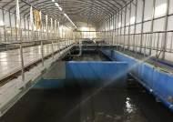 60%만 잡아내던 하수 오염도, 90%까지 측정한다