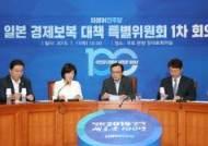 """日에 강경 대응한다며 '새로운 친일파' 비난한 여당 특위, 일각선 """"글쎄…"""""""