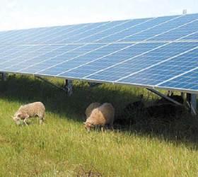 태양광으로 에너지·물 문제 한 번에 해결…<!HS>사우디<!HE> 연구팀 개발
