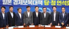 """당청 """"日<!HS>수출<!HE>규제 기업피해 최소화에 가용자원 총동원"""""""