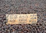 [단독] 한 잔에 10만원?···세계에서 가장 비싼 커피 나온다