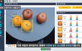 색깔, 크기에 따라 농산물 자동 선별하는 AI 개발된다