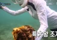 SBS, '정법' 대왕조개 관계자 징계…PD 연출 배제