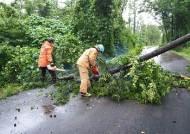 태풍 다나스, 육지 못 밟았다···전남 신안 섬지역서 소멸