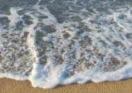 고성 해변서 60~70대 추정 여성 변사체 발견