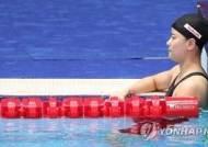 세계 수영의 벽은 너무 높았다...한국 최강자 모두 예선 통과 실패