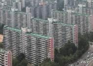 [이코노미스트] 중장기적으로는 오히려 집값 불안 부채질