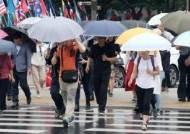 새벽마다 내리는 비…서울·경기·강원영서 폭염도 일시 주춤
