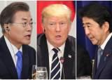 """트럼프 행정부 """"日, 한국 화이트국 제외말라""""···한·일에 중재안"""