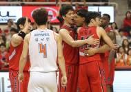 '백색국가 제외 나비효과'…프로농구-컬링 일본행 취소