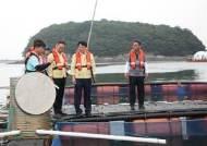서해안 양식어장 비상… 천수만 해역에 고수온 주의보 발령