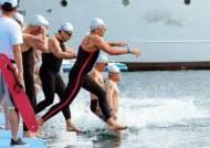 금메달만 985개…글로벌 수영축제, 93세 할머니도 도전장