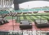 """중국군 선전 집결 """"10분이면 홍콩 간다"""""""