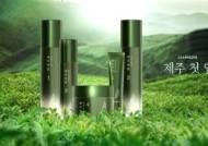 참존, '제주 첫 잎 녹차 라인' 론칭