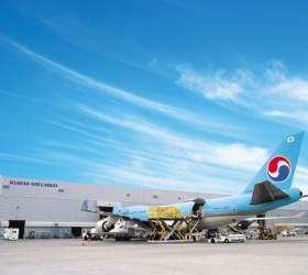 <!HS>대한항공<!HE>ㆍ아시아나는 왜 대구ㆍ광주 화물서비스를 대폭 줄였나