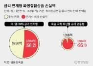 투자원금 최대 95% 손실 위기…DLS 시한폭탄 째깍째깍