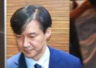 """공주대 교수 """"조국 딸이 3저자? 논문 아닌 초록…특혜 사실 아냐"""""""