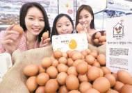 [사진] 난치병 어린이 돕는 기부 달걀