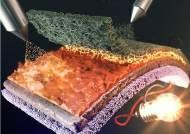 성균관대, 정전기 스프레이 통한 나노 주름 기능층 개발