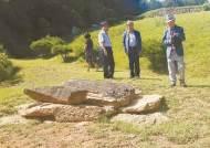 400년 전 이유길 장군의 의로운 말 무덤, 파주 의마총